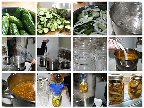 Pickle Collage