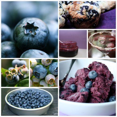 Blueberry season